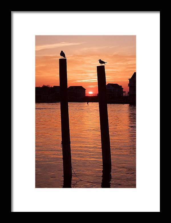 Sunset Framed Print featuring the photograph Chincoteague Sunset by Tom McElvy