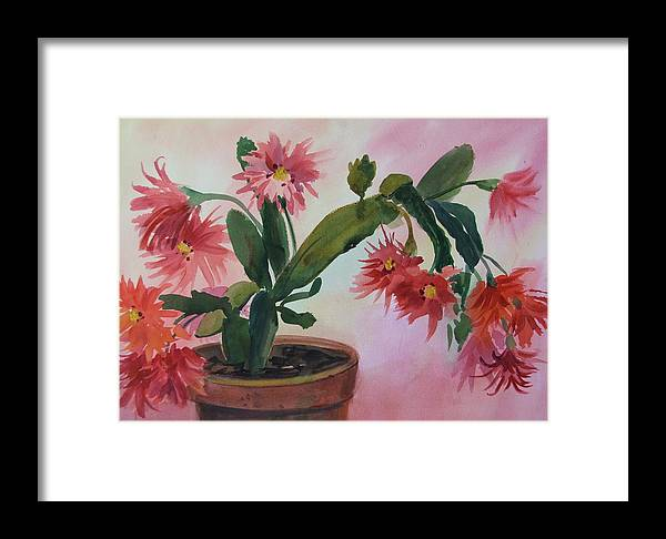 Floral Framed Print featuring the painting Christmas Cactus by Dianna Willman