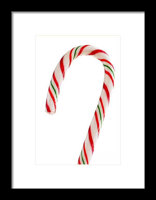 Candy Framed Print featuring the photograph Christmas Candy Cane by Elena Elisseeva