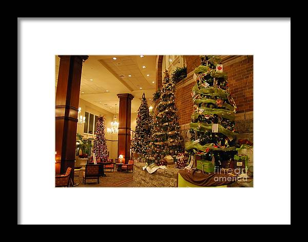 Christmas Framed Print featuring the photograph Christmas Tree by Eric Liller