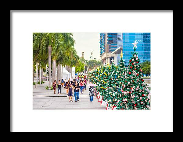 Christmas Framed Print featuring the photograph Christmas Trees by Jijo George