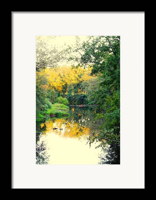 River Framed Print featuring the photograph Chunky River Reflections by Lisa Johnston