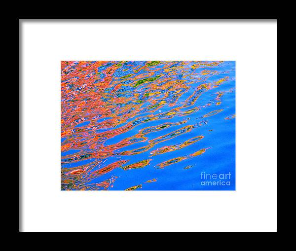 Color Framed Print featuring the photograph Claim by Sybil Staples