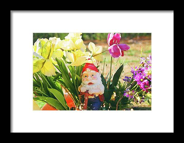 Garden Framed Print featuring the photograph Classic Gnome by Herbert Rioja