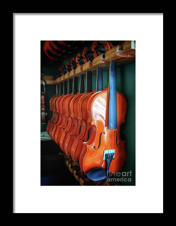 Classical Violins Framed Print featuring the photograph Classical Violins by John Myers