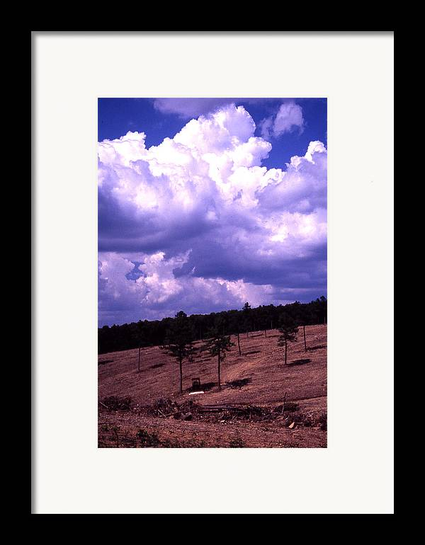 Framed Print featuring the photograph Clear-cut by Curtis J Neeley Jr