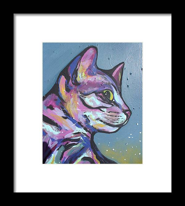 Cat Framed Print featuring the painting Close Rainbow Rocky by Sarah Crumpler