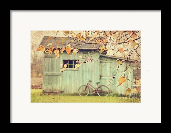 Agriculture Framed Print featuring the photograph Closeup Of Leaves With Old Barn In Background by Sandra Cunningham