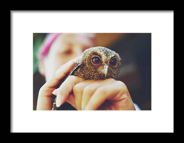 Adorable Framed Print featuring the photograph Closeup Portrait Of A Girl Holding And Tending A Small Baby Owl In Her Hands by Srdjan Kirtic