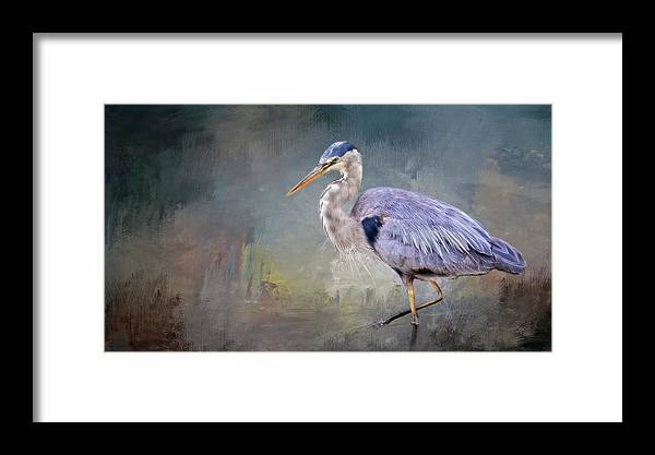 Great Blue Heron Framed Print featuring the photograph Closing-in, Great Blue Heron by Flying Z Photography by Zayne Diamond