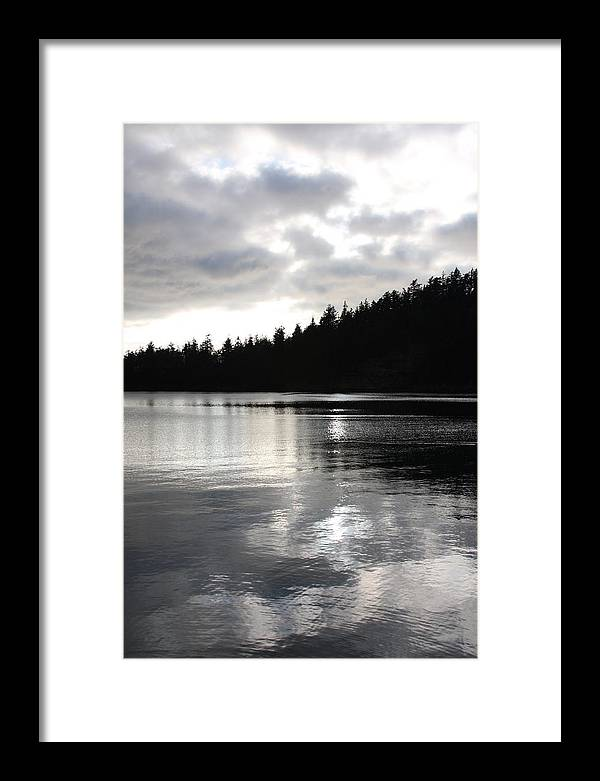 Tree Framed Print featuring the photograph Cloud Covered by Michael Lee