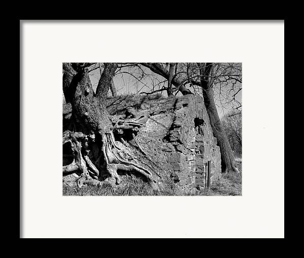 Framed Print featuring the photograph Cmn-parkxx11 by Curtis J Neeley Jr