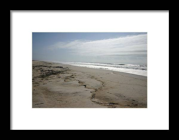 Nature Framed Print featuring the photograph Coast Line Long Island by Dennis Curry