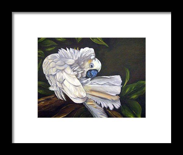 Birds Framed Print featuring the painting Cockatoo Preening by Anne Kushnick