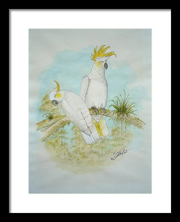 Birds Framed Print featuring the painting Cockatoos by Dennis Vebert