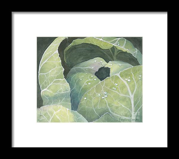 Cabbage Framed Print featuring the painting Cold Crop by Phyllis Howard