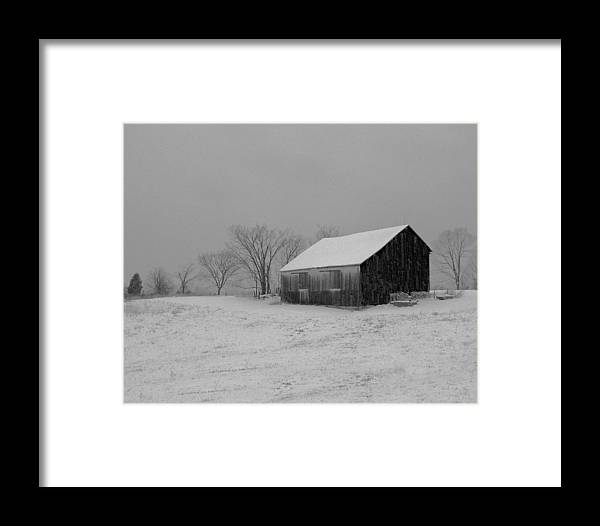 Nature Framed Print featuring the photograph Cold Winter Night by Martie DAndrea
