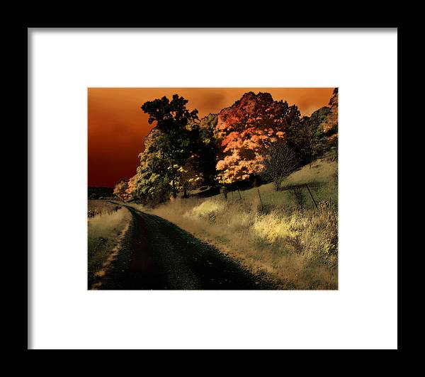 Road Framed Print featuring the photograph Coles County by Jim Painter