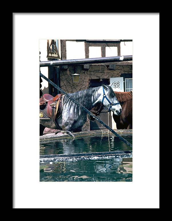 Colmar Framed Print featuring the photograph Colmar II by Flavia Westerwelle