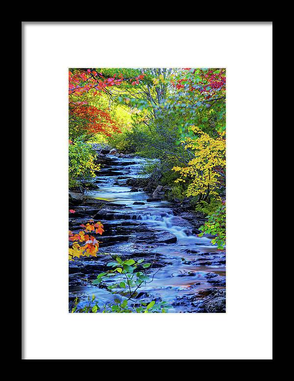 Color Alley Framed Print featuring the photograph Color Alley by Chad Dutson