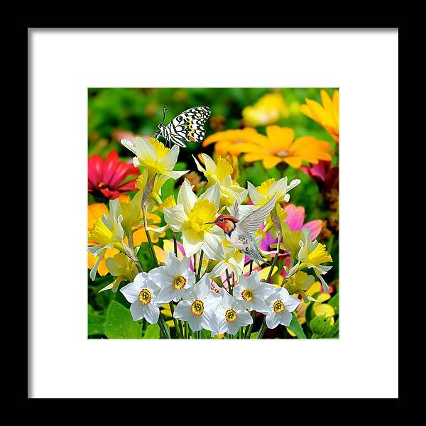 Flowers Framed Print featuring the digital art Color Of Nature by Teresa Peterson