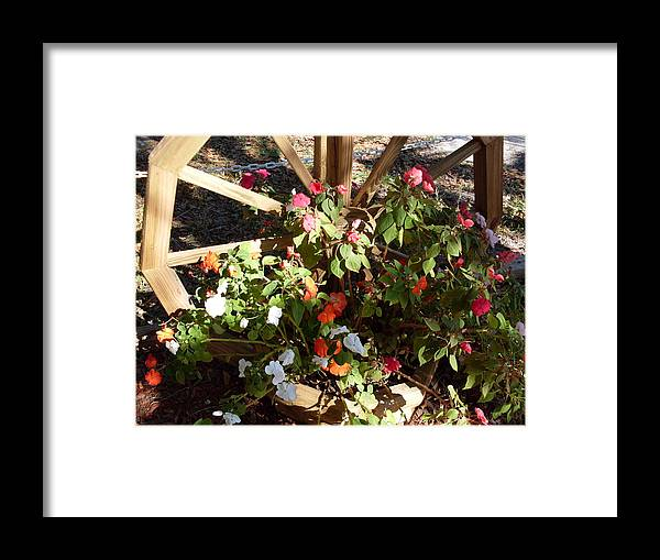 Flowers Landscape Framed Print featuring the photograph Color Wheel Ft Mccoy Fl by Warren Thompson