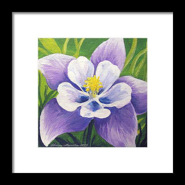 Columbine Framed Print featuring the painting Colorado Columbine by Sharon Marcella Marston