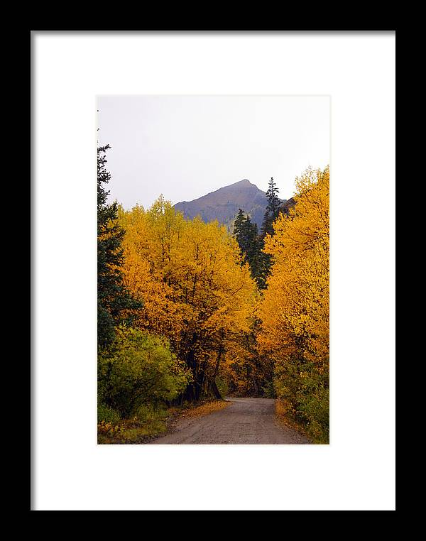 Fall Colors Framed Print featuring the photograph Colorado Road by Marty Koch