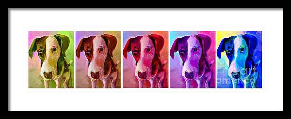 Dog Framed Print featuring the painting Colored Dog Strip by Linda Vespasian
