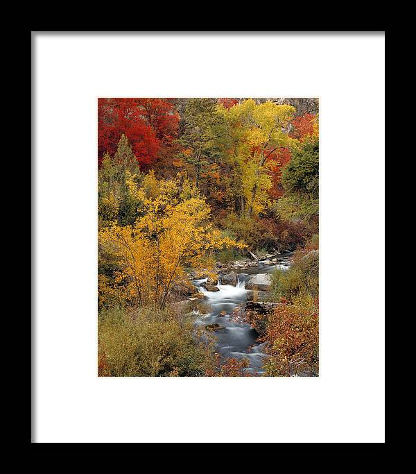 Idaho Scenics Framed Print featuring the photograph Colorful Canyon by Leland D Howard