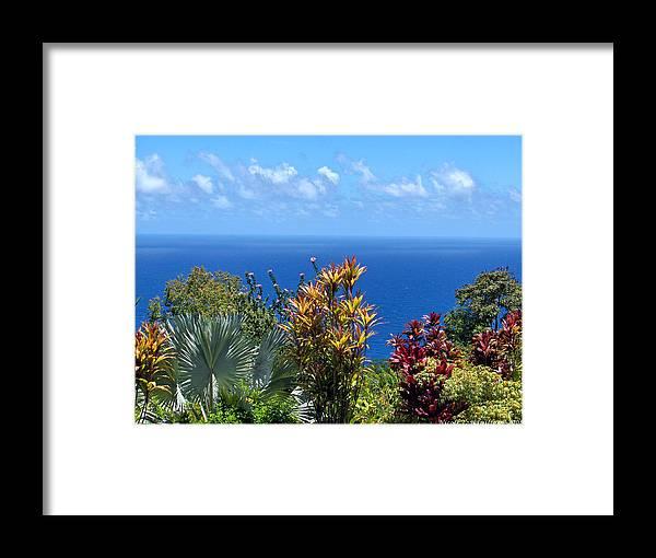 Sea Framed Print featuring the photograph Colorful Coast by Nicole I Hamilton