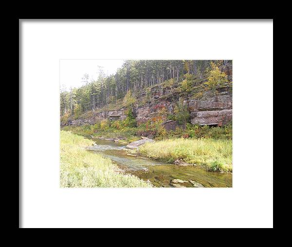 Framed Print featuring the photograph Coloring Brook by Dennis Wilkins