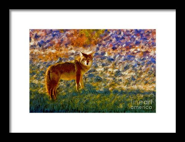 Death Valley Framed Print featuring the photograph Colorized Death Valley Coyote by Blake Richards