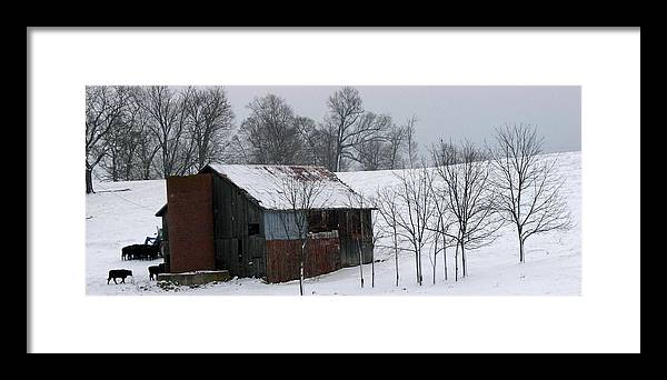 Barn Framed Print featuring the photograph Coming Home by Joseph Battaglia