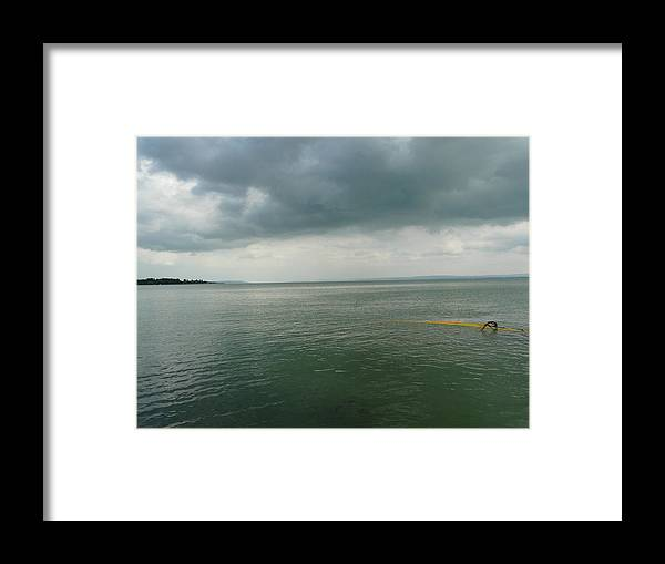 Lake Framed Print featuring the photograph Coming Up For Air by Attila Balazs