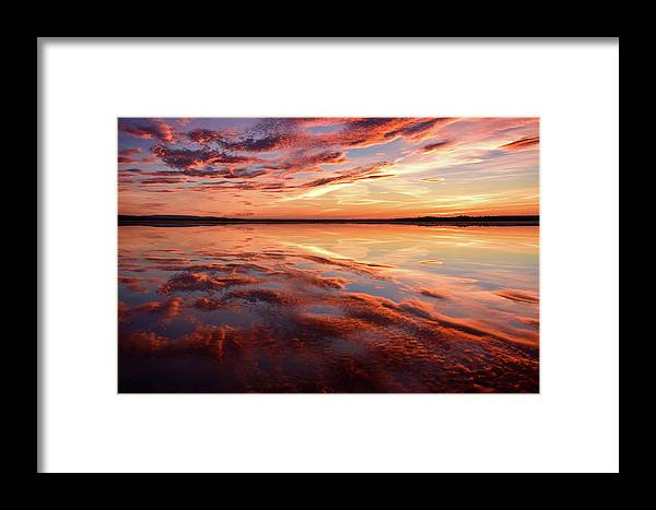 Chris Aldridge Framed Print featuring the photograph Command Of Beauty by Chris Charles