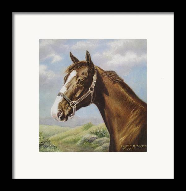 Framed Print featuring the painting Commission Chestnut Horse by Dorothy Coatsworth
