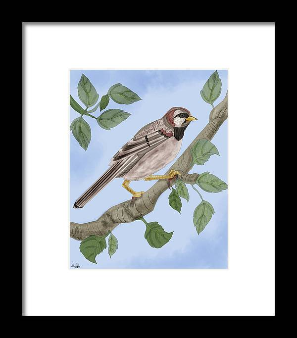 Sparrow Framed Print featuring the painting Common House Sparrow by Anne Norskog