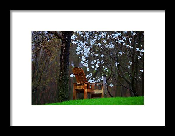 Chair Framed Print featuring the photograph Contemplation Chair by David Christiansen