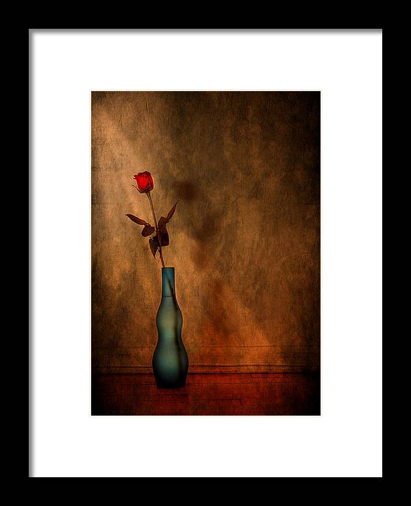 Composition Framed Print featuring the photograph Contemplation by Evelina Kremsdorf