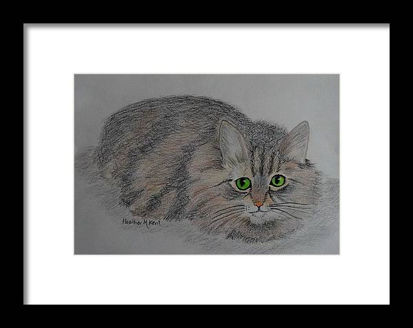 Cat Framed Print featuring the drawing Contemplation by Heather M Kent