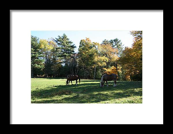 Landscape Framed Print featuring the photograph Contentment by Doug Mills