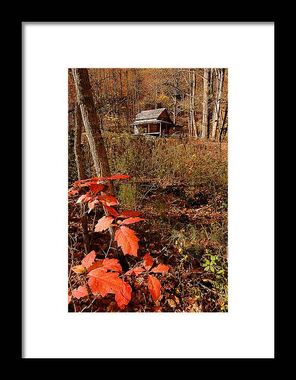Log Cabin Framed Print featuring the photograph Cook Cabin by Alan Lenk