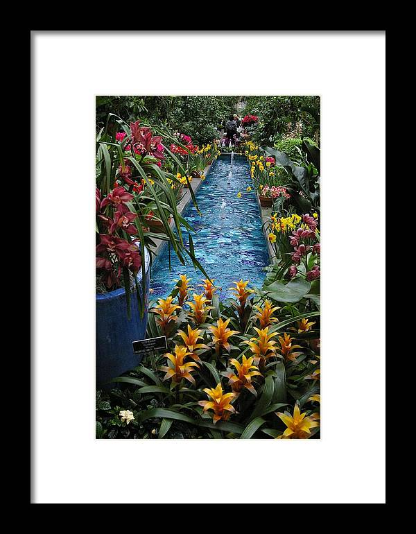 Flowers Framed Print featuring the photograph Cool And Calming by Veron Miller
