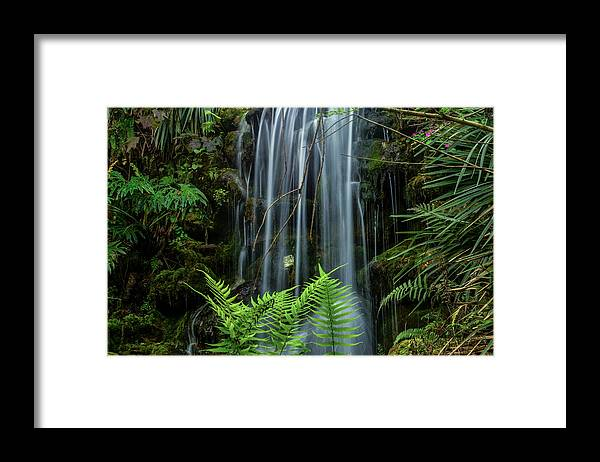 Waterfall Framed Print featuring the photograph Cool Spot On A Hot Day by Robert Coffey