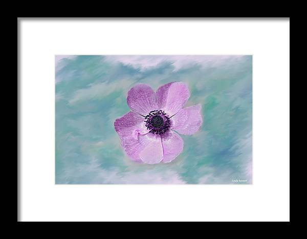 Flowers Floral Macro Nature Gardens Pink Purple Blue Green White Petals Spring Flowers Framed Print featuring the photograph Cool Spring by Linda Sannuti