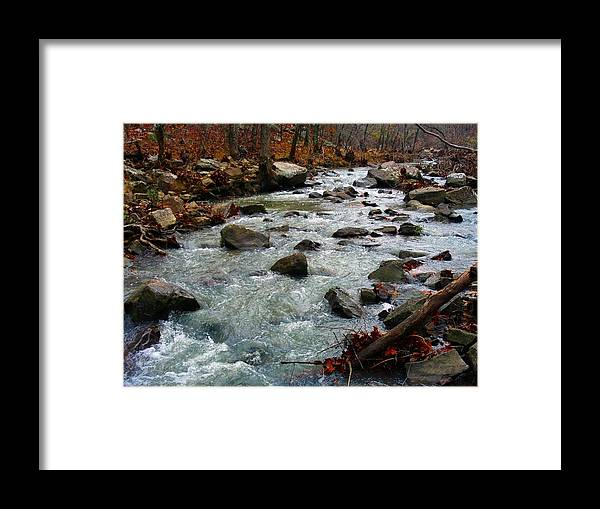 Nature Framed Print featuring the photograph Cool Water by Daisy Lowe