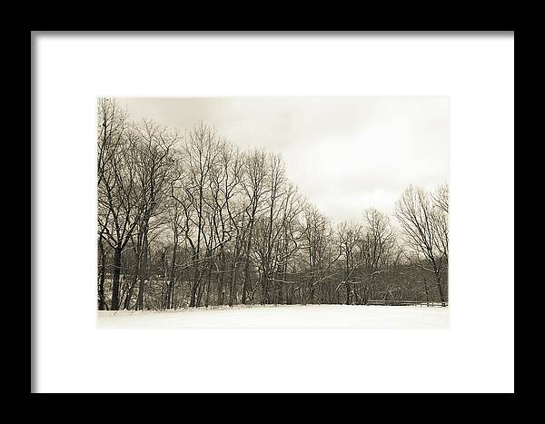 Winter Framed Print featuring the photograph Cool Winter by Nikki Nisly