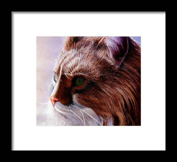Cat Portrait. Framed Print featuring the painting Maine Coon Cat by John Gabb
