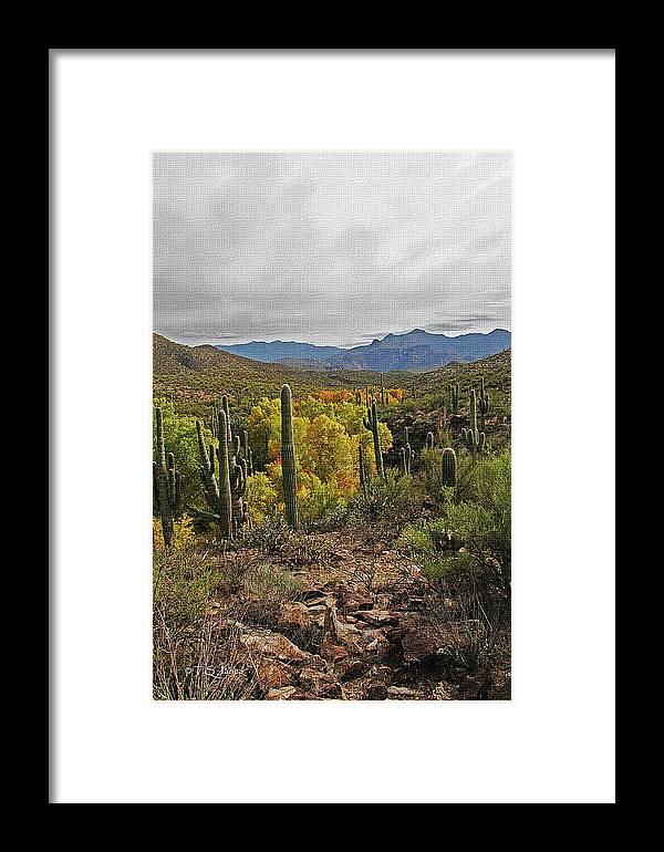 Coon Creek Looking South Framed Print featuring the digital art Coon Creek Looking South by Tom Janca